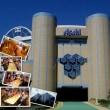 アサヒビール工場見学ウォーキング