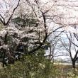 華蔵寺公園にて