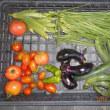 今日の収穫 トマト キュウリ ナス オクラ ニラ カボチャ トウガラシ類