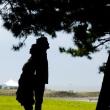 全国出張前撮り&ブライダルカメラマン森永健一ホームページを更新しました!