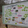 芽吹きの森を3時間歩き、3時間歩を止め観察する。