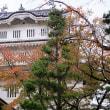 忍城・菊花展と紅葉