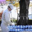 2017年11月29日 NHK放映