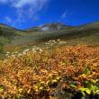 富士山 9月度 「 私のベスト 」