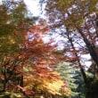 秋を感じてきた♪ヽ(´▽`)/