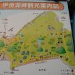 伊良湖岬タカ渡り・10月12日