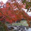 秋の平成庭園