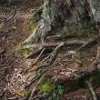 紅葉に染まる中央アルプス宝剣岳に登って来ました。