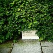 植物資料館を見学