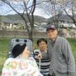 ~お花見ツアー🌸 4/12 真田運動公園~