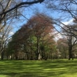 『北海道大学植物園』