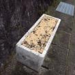コンポスト堆肥で防寒