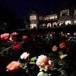 旧古河庭園のバラ ライトアップ・・3