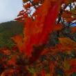 蔵王熊野岳