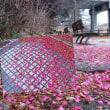 花彩々  椿道