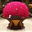 「薔薇の大輪/帝国ホテル」
