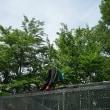 ジュニアと奈良農場で作業しておりました。