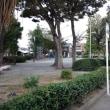 寺町公園と塔ノ木公園