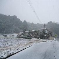 降る雪や~