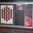 Print Studio Pro 起動