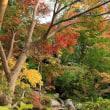 松尾寺の紅葉