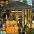 自転車で「カジノはいらん」/ ともしび園祭りから市民会館跡地プロジェクト
