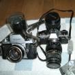 昔のカメラで撮ってみました