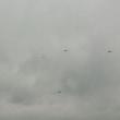 ヘリコプターがいっぱい
