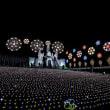 400万球のイルミネーション あしかがフラワーパーク ~光の花の庭~ 前編