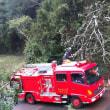最強台風21号VS消防団❗激闘の軌跡❗