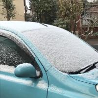 初雪・・・・・・・