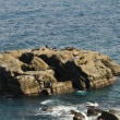 鵜戸神宮周辺の磯場は釣り人のあこがれの地 (Photo No.14183)