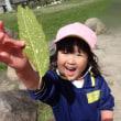 ぴんく・すみれ 2歳児 ミニ遠足!