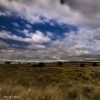 マウナケア草原