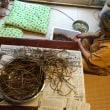 さつま芋茎の下処理