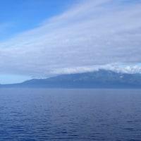 翼なき羆(ひぐま)渡れる利尻島 右舷に見つつトーストを食む