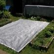 庭木が暑さで枯れそう!農業用遮光ネットで覆おう