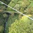 那須高原までドライブに行ってきました『那須平成の森~マウントジーンズ那須ゴンドラ~つつじ吊橋』@紅葉の那須高原
