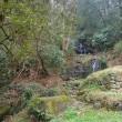 山田川の自然:小滝が