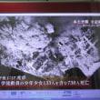 岩国空襲と岩国爆弾中心地の碑---JR岩国駅前