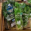 日替わりマルシェ「奈良産直野菜」♪