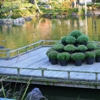 しあわせの村『日本庭園』