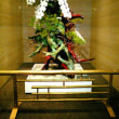 神戸ポートピアホテルのお迎え花