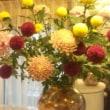 シャンソン歌手リリ・レイLILI LEY  秋のシャンソンを歌う花達の稽古部屋