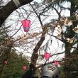 鶴舞公園開花