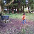 休暇村南阿蘇でキャンプ