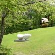 箱根彫刻の森美術館その2    投稿者:佐渡の翼