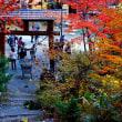 「紅桜公園」で恩師と遊んだ思い出