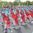 福山ばら祭 驚きの85万人