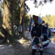 安楽神社春祭り